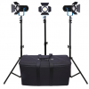 Dracast Boltray 400 Plus Daylight LED 3-Light Kit with Soft Case
